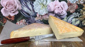 Taleggio Soft Cheese