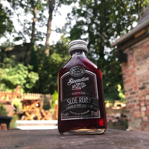 Sloemotion Gin 5cl