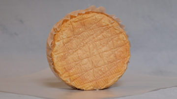 Epoisses de Bourgogne – Mini Cheese