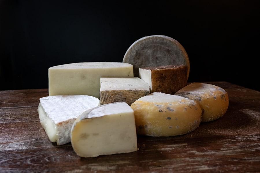 sheep cheese 1